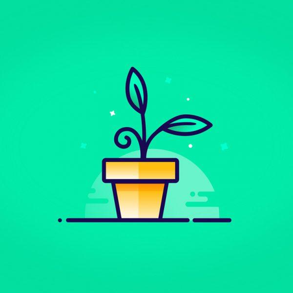 هک رشد چیست ؟